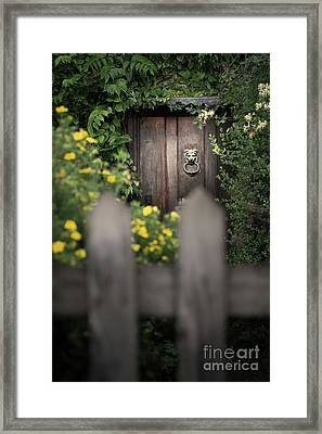 Behind A Fence Framed Print by Svetlana Sewell