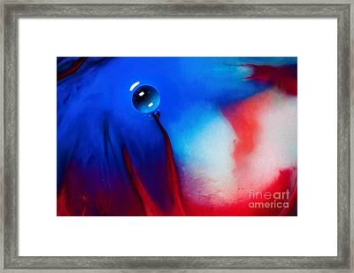 Behind Blue Eye Framed Print