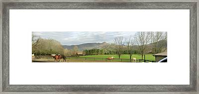 Behind The Dillard House Restaurant Framed Print by Jerry Battle