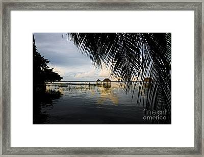 Framed Print featuring the photograph Behind The Leaves by Yuri Santin
