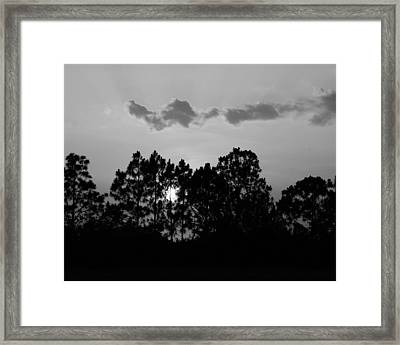 Behind The Trees Framed Print by Florene Welebny