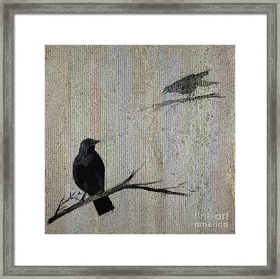 Behind The Veil Framed Print by Susan Driver