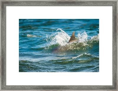 Behind The Wave Framed Print
