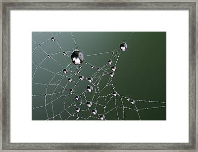 Behold Framed Print by Rebecca Cozart