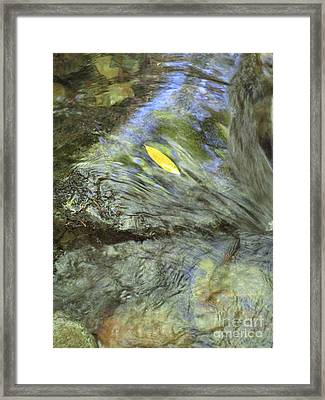 Framed Print featuring the photograph Being Still by Marie Neder
