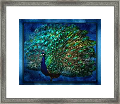 Being Yourself - Peacock Art Framed Print