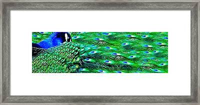 Bejeweled Framed Print