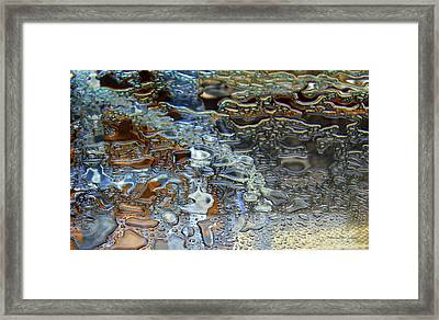Bejeweled Framed Print by Deborah  Crew-Johnson
