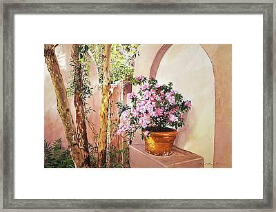 Bel-air Azaleas Framed Print