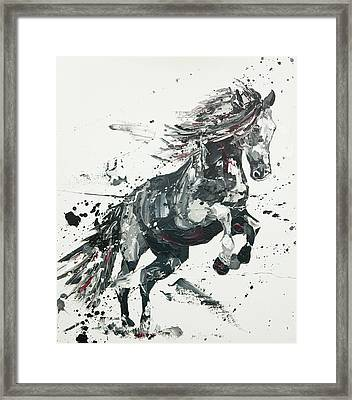 Belicose Framed Print by Penny Warden