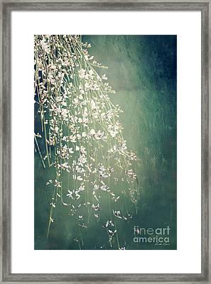 Believe In Dreams Framed Print