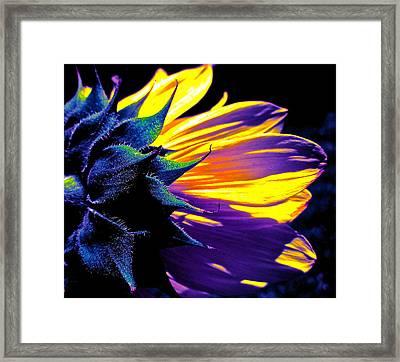 Believe In Him Framed Print by Gwyn Newcombe