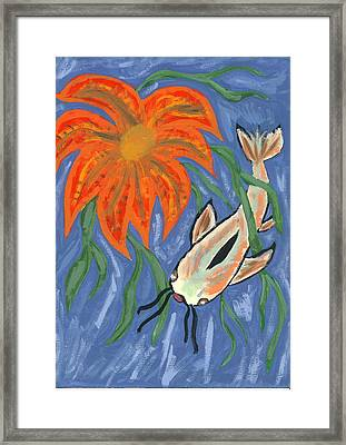 Belize Framed Print by Laura Lillo