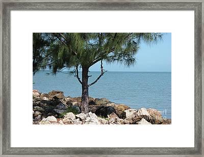 Belize Ocean Front Framed Print