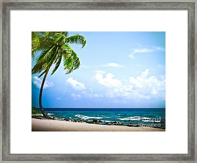 Belize Private Island Beach Framed Print by Ryan Kelly