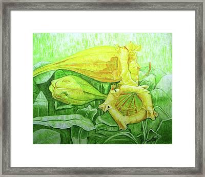 Bell Flower Framed Print by Dwayne Hamilton