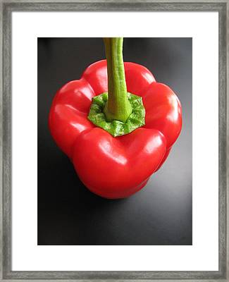 Framed Print featuring the photograph Bell On Black by Lindie Racz