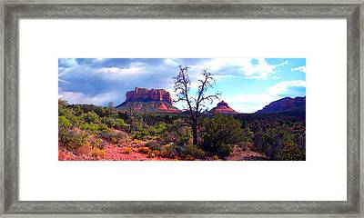 Bell Rock Panorama Framed Print by Harvie Brown
