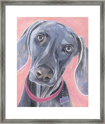 Framed Print featuring the painting Bella by Jamie Frier