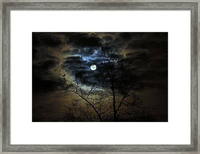 Bella Luna Framed Print by Suzanne Stout