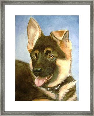 Bella Framed Print by Marilyn Jacobson
