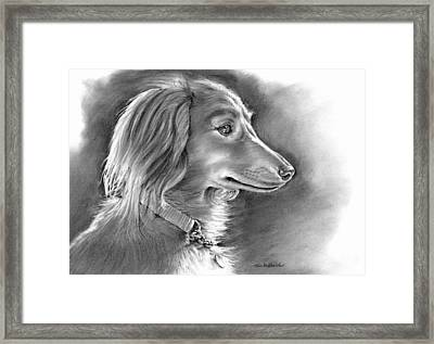 Bella Framed Print by Tom Hedderich