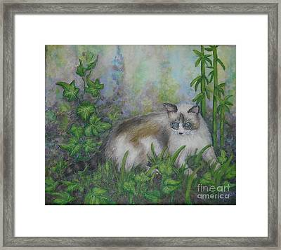 Bella With Ivy And Bamboo Framed Print by Sheri Hubbard