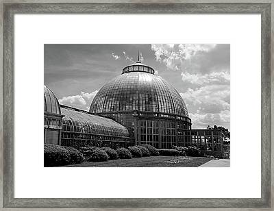 Belle Isle Conservatory 3 Bw Framed Print by Mary Bedy