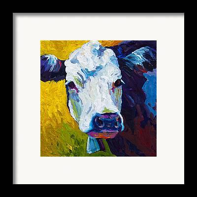 Livestock Framed Prints