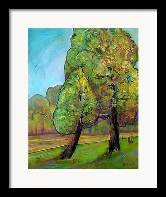 Fir Trees Framed Prints