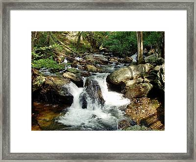Below Anna Ruby Falls Framed Print by Jerry Battle