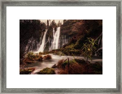 Below Burney Falls Framed Print