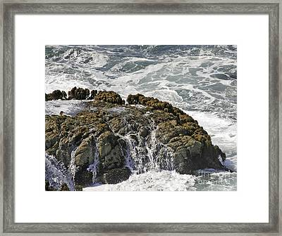Below Salmon Creek Framed Print