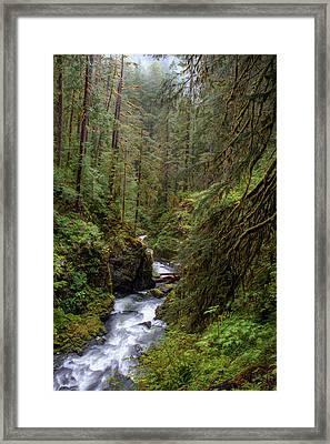 Below The Falls Framed Print by David Andersen