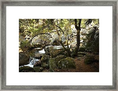 Below Vernal Falls  Framed Print by Chris Brewington Photography LLC