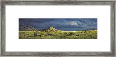 Belt Butte Spring Framed Print