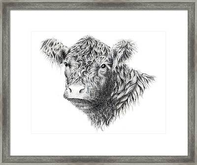 Beltie Framed Print by Sandra Moore