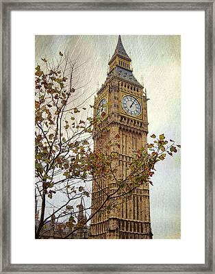 Ben In Autumn Framed Print by JAMART Photography