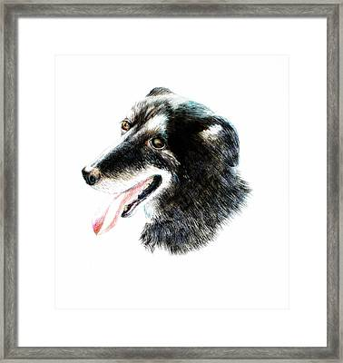 Ben Framed Print by Maria Boklach