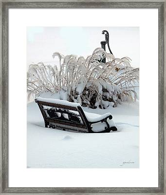 Bench - Tall Grass And Water Pump Framed Print