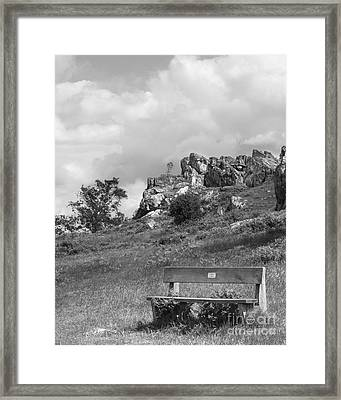 Bench At Beacon Hill Leicestershire Framed Print by Linsey Williams