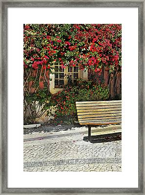 Bench By The Bougainvilla Framed Print