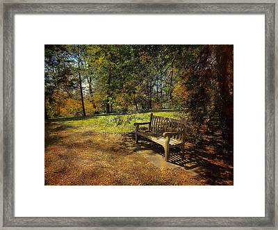 Framed Print featuring the photograph Bench by John Rivera