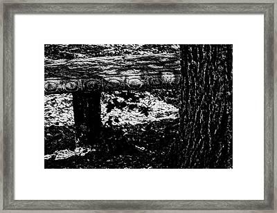 Bench Loves Tree Framed Print