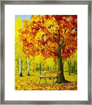 Bench Under The Maple Tree Framed Print