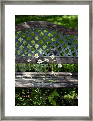 Benched Framed Print by Aaron Aldrich