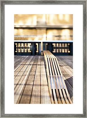 Benches At The High Line Park Framed Print by Eddy Joaquim
