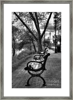 Benches On Riverside Drive Bw Framed Print by Mel Steinhauer