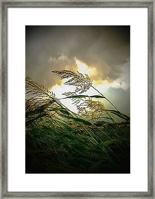 Bend In The Storm Framed Print by Ken Gimmi