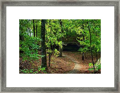 Bend In The Trail Framed Print by Larry Braun